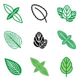 Mint leaf icons Royalty Free Stock Photos