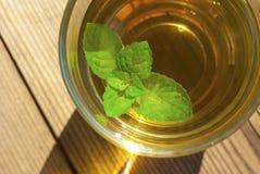 Mint leaf in mint tea Royalty Free Stock Photos