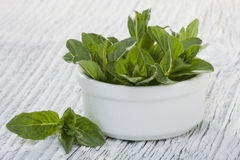 Mint leaves Stock Photo