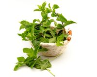 Mint leaves in a basket Royalty Free Stock Photos