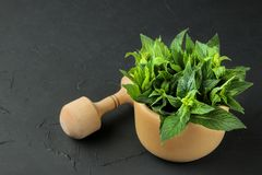 Mint. Leaves and branches of fresh green wild mint in a mortar on a black concrete table royalty free stock images