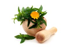 Mint leaves and Calendula in a wooden mortar. Royalty Free Stock Photography