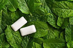 Mint leaves and chewing gum Stock Photo