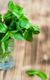 Mint leaves in the glass Stock Images