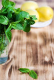 Mint leaves in the glass and lemons Royalty Free Stock Images