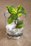 Mint leaves with ice cubes in wet glass on burlap Royalty Free Stock Images