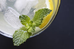 Mint Leaves in Lemonade Royalty Free Stock Photography