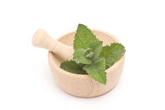 Mint leaves in mortar Royalty Free Stock Images