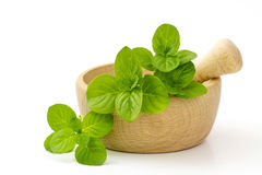 Mint leaves in a mortar Stock Photos