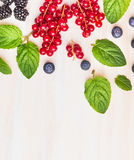 Mint leaves and summer berries on white wooden background, frame, top view Stock Images