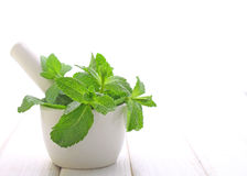 Mint leaves in the white Royalty Free Stock Photo