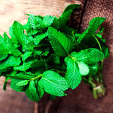 Mint leaves on wooden table closeup. Bunch of Fresh green organi Royalty Free Stock Photography
