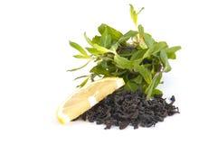 Mint, lemon and black tea. Stock Images