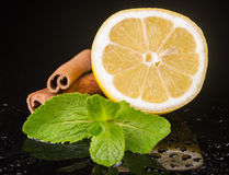 Mint with lemon and cinnamon Stock Image