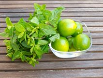 Mint and lemons Stock Photo