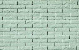 Mint or light greeen colored brick wall background or texture Stock Images