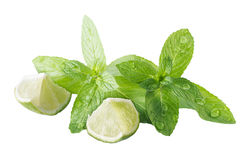 Mint and lime Royalty Free Stock Images