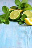Mint with lime. Royalty Free Stock Photo