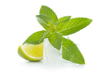 Mint, lime and ice Stock Images