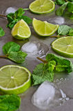 Mint, lime, ice Royalty Free Stock Images