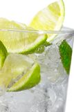 Mint, lime ice vodka Stock Images