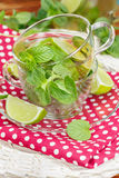 Mint and lime iced green tea Royalty Free Stock Image