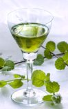 Mint liquor and fresh mint Royalty Free Stock Images