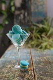 Mint macaroon in a champagne glass Stock Image