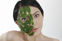 Mint Mask Royalty Free Stock Images