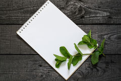 Mint Mentha spicata and notebook Royalty Free Stock Photos
