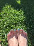 mint nail polish in the green grass Royalty Free Stock Photography