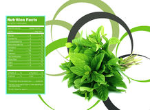 Mint nutrition facts. Creative Design for mint with Nutrition facts label Royalty Free Stock Photo