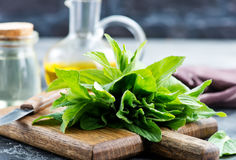 Mint oil. In bottle and on a table royalty free stock photo