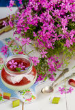 Mint panna cotta with rhubarb Royalty Free Stock Image