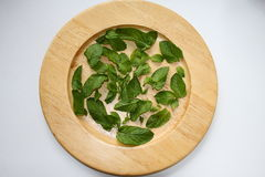 Mint on a plate Stock Photography