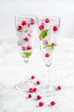 Mint and red berries in ice cubes in glasses white background Stock Image