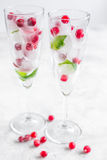 Mint and red berries in ice cubes in glasses white background Stock Images