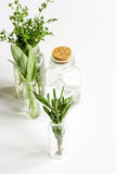 Mint, sage, rosemary, thyme in glass bottles white background royalty free stock photos