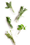 Mint, sage, rosemary, thyme in glass bottles white background royalty free stock photography