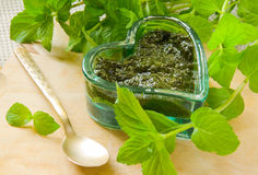 Mint sauce royalty free stock images