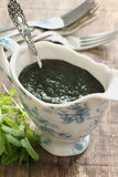 Mint Sauce Royalty Free Stock Photos