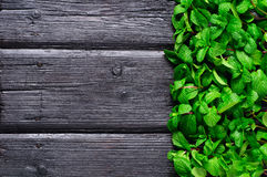 Mint sheaf charred on the old wooden background Stock Photo