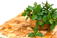 Mint in small basket on natural wooden background, peppermint, s Royalty Free Stock Image