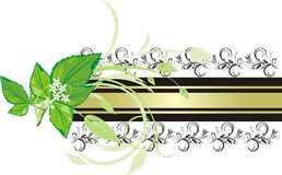 Mint sprig on the background of decorative banner Stock Photography