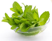 Mint sprigs in bowl Stock Photos