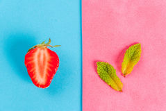 Mint and strawberry on colorful background. Fresh raw organic seasonal fruits and berries. The seamless pattern - mint, strawberry on a colorful blue and pink Royalty Free Stock Images