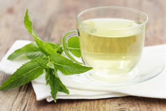 Mint tea Stock Photos