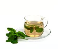 Mint tea. Stock Photo