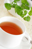 Mint tea Royalty Free Stock Image
