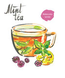 mint tea stock illustrationer